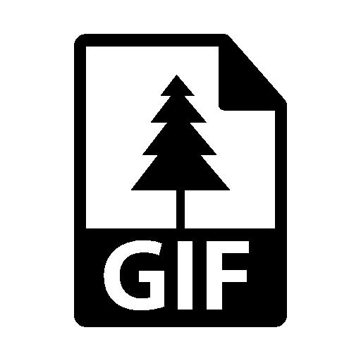 Anigif5